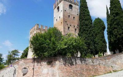 Best of Conegliano